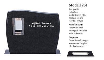Modell nr. 231D