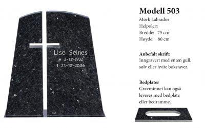 Modell 503 – Mørk labrador